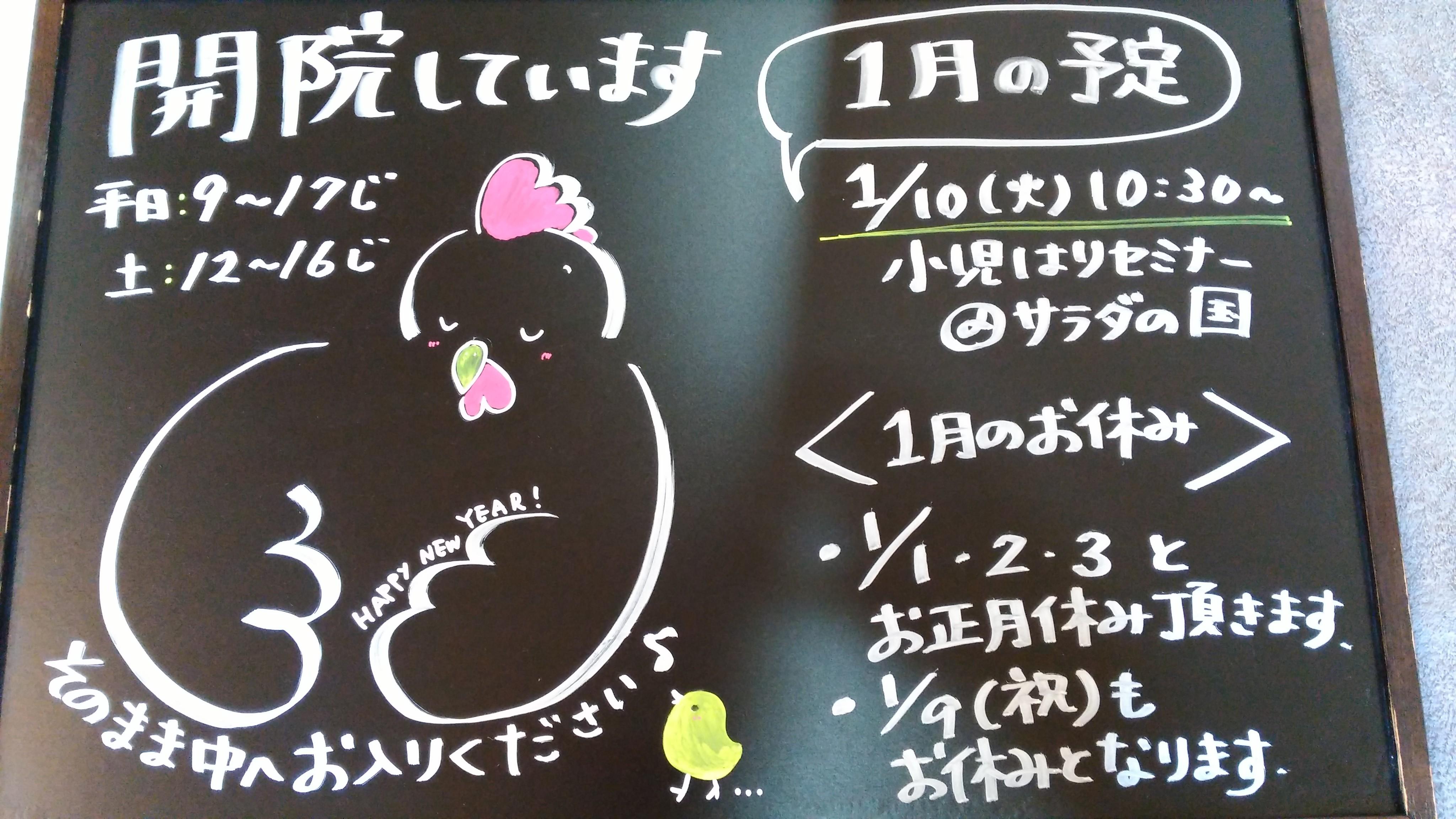 IMG_20161227_095355